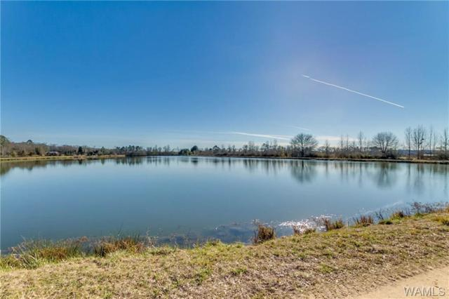 11492-0 Sipsey Valley Road N, BUHL, AL 35446 (MLS #131602) :: The Advantage Realty Group
