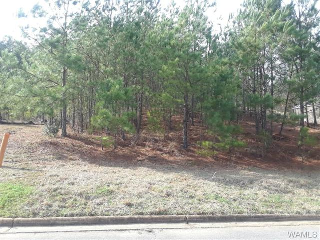 00 26TH Avenue, NORTHPORT, AL 35473 (MLS #131657) :: Wes York Team