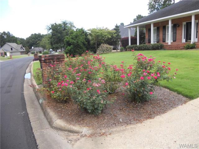 1181 Auxford Avenue, TUSCALOOSA, AL 35405 (MLS #131698) :: The Advantage Realty Group
