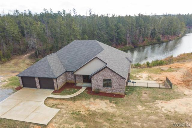 15832 Wire Road, COTTONDALE, AL 35453 (MLS #131763) :: The Gray Group at Keller Williams Realty Tuscaloosa