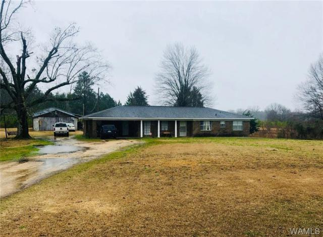 12701 Northside Road, NORTHPORT, AL 35475 (MLS #131816) :: The Advantage Realty Group
