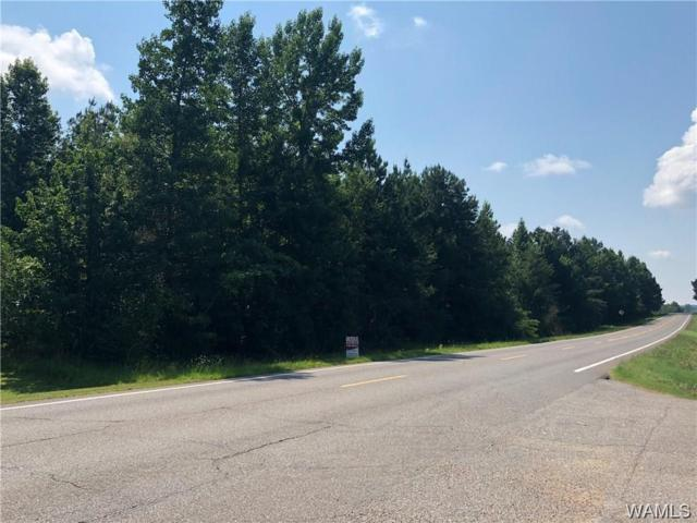 0 Hwy 43 N, BERRY, AL 35546 (MLS #131855) :: The Advantage Realty Group