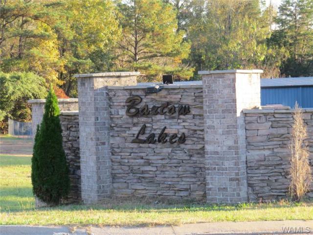 11919 Skelton Drive, DUNCANVILLE, AL 35456 (MLS #131976) :: Wes York Team