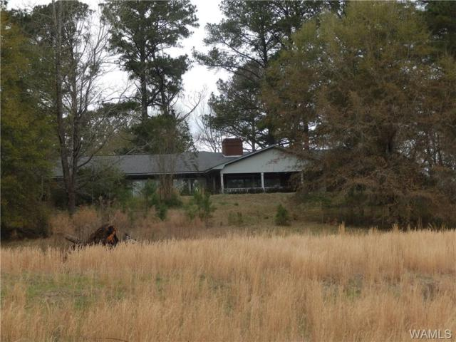 16095 Highway 17, ALICEVILLE, AL 35442 (MLS #132092) :: The Gray Group at Keller Williams Realty Tuscaloosa