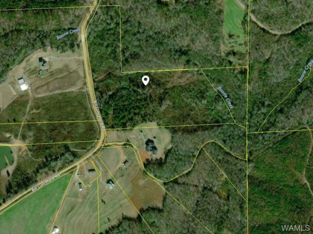 000 Bill Lunceford Road, BERRY, AL 35446 (MLS #132103) :: The Advantage Realty Group