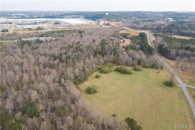 0 Tingle Tangle Road, VANCE, AL 35490 (MLS #132140) :: Wes York Team