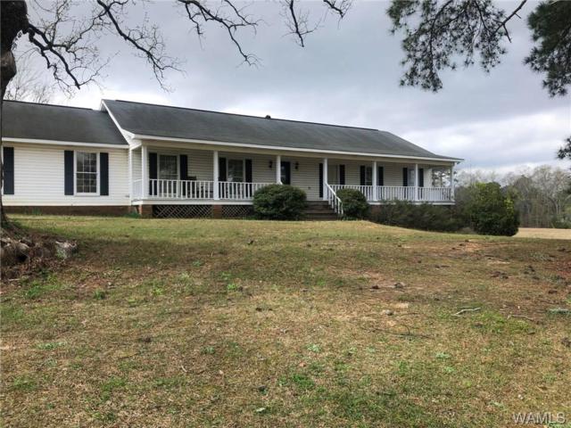 1161 Union Chapel Road E, NORTHPORT, AL 35473 (MLS #132154) :: The Gray Group at Keller Williams Realty Tuscaloosa
