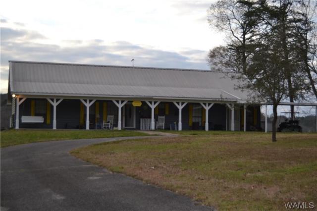14850 Riverview Drive, BROOKWOOD, AL 35444 (MLS #132184) :: The Alice Maxwell Team