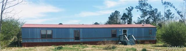 244 Roland Estates Road, CARROLLTON, AL 35447 (MLS #132239) :: The Advantage Realty Group