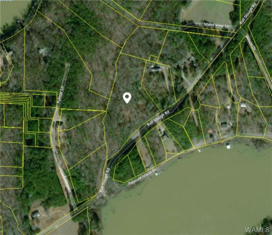 0 Bull Slough Road, NORTHPORT, AL 35475 (MLS #132261) :: The Advantage Realty Group
