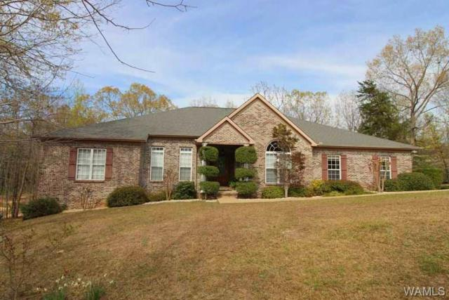 13422 Clements Rd, COTTONDALE, AL 35453 (MLS #132451) :: Wes York Team