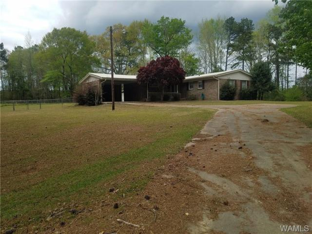 3595 Us Hwy 11, Cuba, AL 36907 (MLS #132482) :: Wes York Team