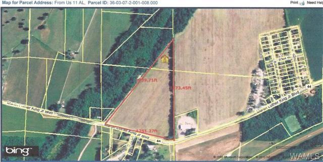 0 Martin Luther King Jr., TUSCALOOSA, AL 35401 (MLS #132572) :: Hamner Real Estate