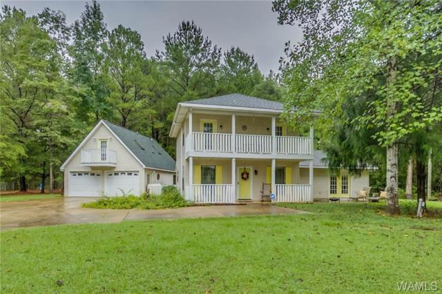 16787 N River Shores Road, NORTHPORT, AL 35475 (MLS #132624) :: Hamner Real Estate