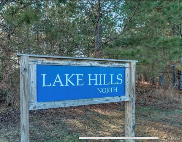 Lot 32 Lake Hills Lane, NORTHPORT, AL 35475 (MLS #132697) :: Wes York Team