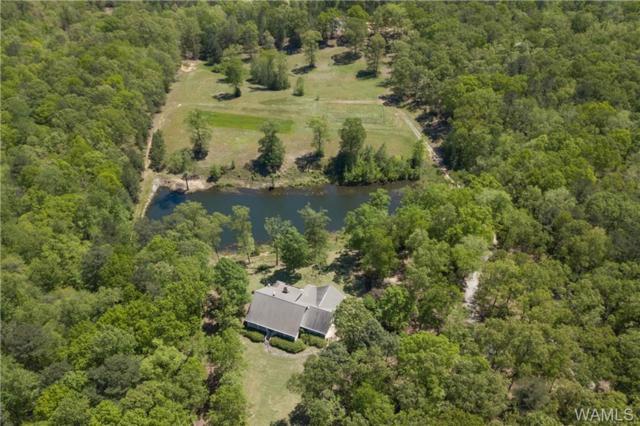 16125 Marcum Road, TUSCALOOSA, AL 35406 (MLS #132766) :: The Gray Group at Keller Williams Realty Tuscaloosa