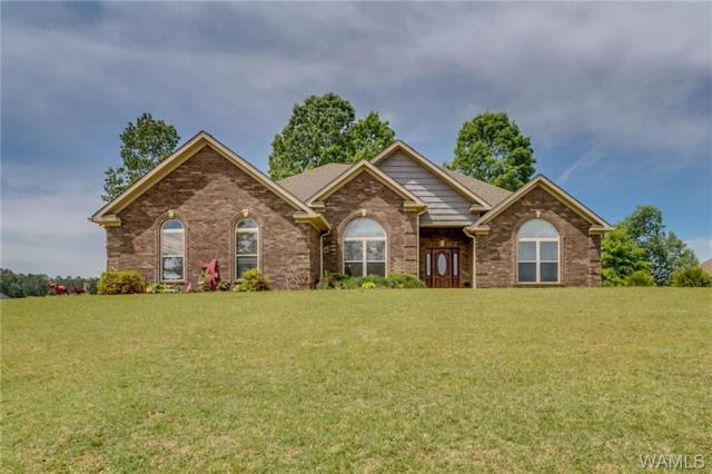 10633 Austin Loop, VANCE, AL 35490 (MLS #132773) :: Hamner Real Estate