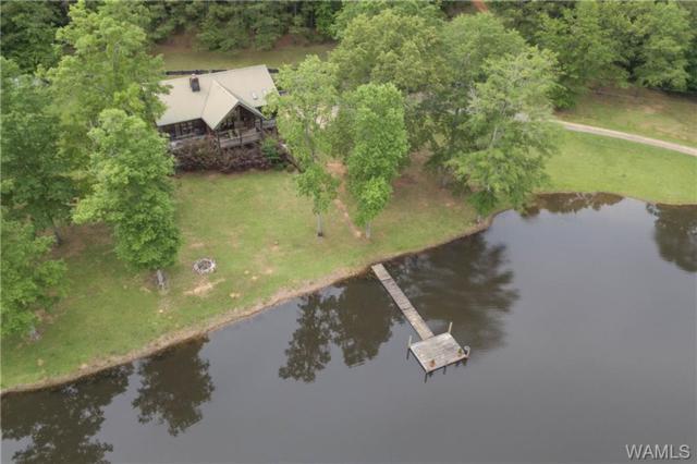13437 Crimson Valley Drive, COTTONDALE, AL 35453 (MLS #132796) :: Hamner Real Estate