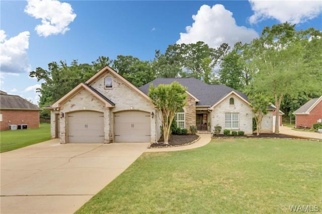 13696 Randa Parkway, NORTHPORT, AL 35475 (MLS #132797) :: Hamner Real Estate