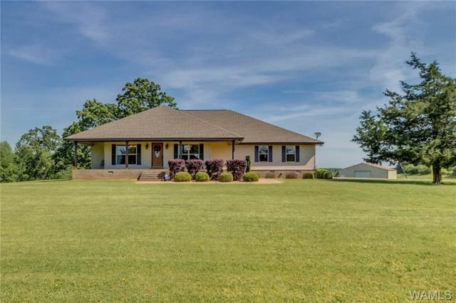 21416 Bill Lunceford Road, BERRY, AL 35546 (MLS #132947) :: The Advantage Realty Group
