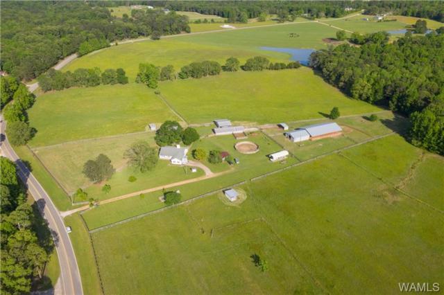 16340 Yellow Creek Road, TUSCALOOSA, AL 35406 (MLS #132963) :: Hamner Real Estate