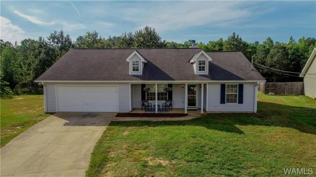 15919 Northwind Circle, NORTHPORT, AL 35475 (MLS #133043) :: Hamner Real Estate