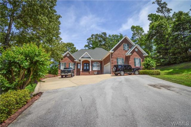 11715 Elam Drive, NORTHPORT, AL 35475 (MLS #133058) :: Hamner Real Estate