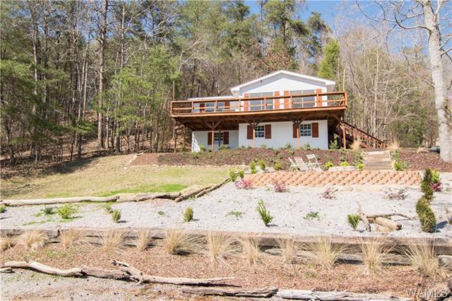 11182 Treasure Island Drive, NORTHPORT, AL 35475 (MLS #133093) :: Hamner Real Estate