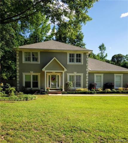 1003 55th Street, NORTHPORT, AL 35473 (MLS #133095) :: Hamner Real Estate