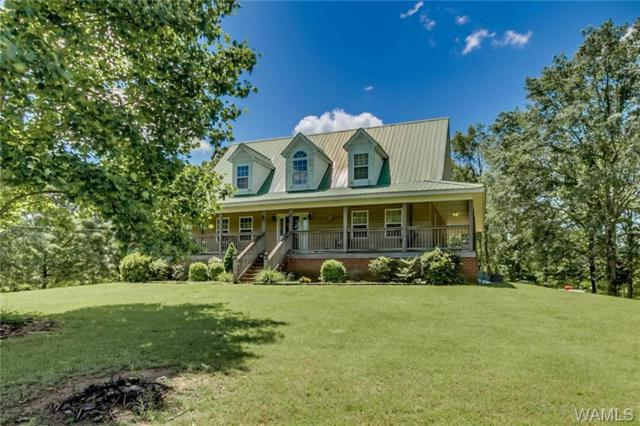 152 76 County Road, FAYETTE, AL 35555 (MLS #133097) :: The Gray Group at Keller Williams Realty Tuscaloosa