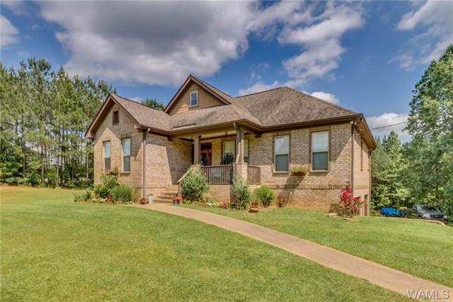 18745 Crisstown Road, VANCE, AL 35490 (MLS #133148) :: The Advantage Realty Group