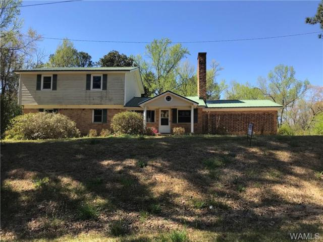 3118 Reform Gordo Road, GORDO, AL 35466 (MLS #133160) :: The Advantage Realty Group