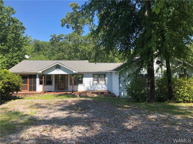 17194 Searcy Road, NORTHPORT, AL 35475 (MLS #133167) :: Hamner Real Estate
