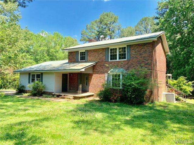 4628 Chestnut Hill Drive, NORTHPORT, AL 35473 (MLS #133171) :: Hamner Real Estate