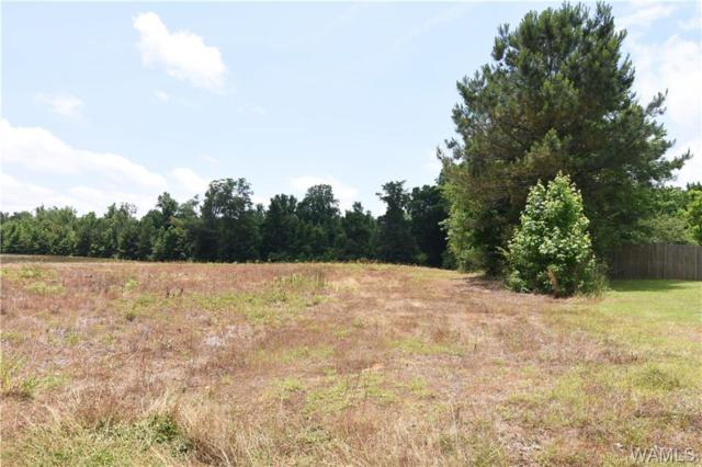 00 22nd Street NW, FAYETTE, AL 35555 (MLS #133229) :: Hamner Real Estate