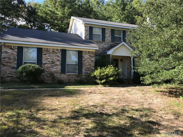 6020 4th Avenue, NORTHPORT, AL 35473 (MLS #133247) :: The Advantage Realty Group