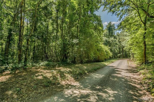 0 Trion Lane, VANCE, AL 35490 (MLS #133257) :: Wes York Team