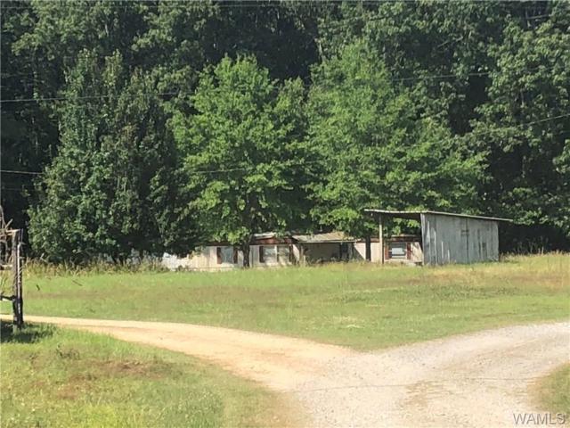 16211 Highway 69 N, NORTHPORT, AL 35475 (MLS #133309) :: The Gray Group at Keller Williams Realty Tuscaloosa
