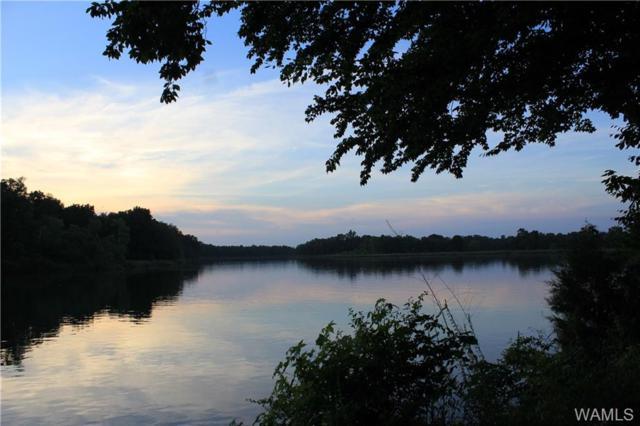 1 Cypress Point Drive, AKRON, AL 35441 (MLS #133351) :: The Gray Group at Keller Williams Realty Tuscaloosa