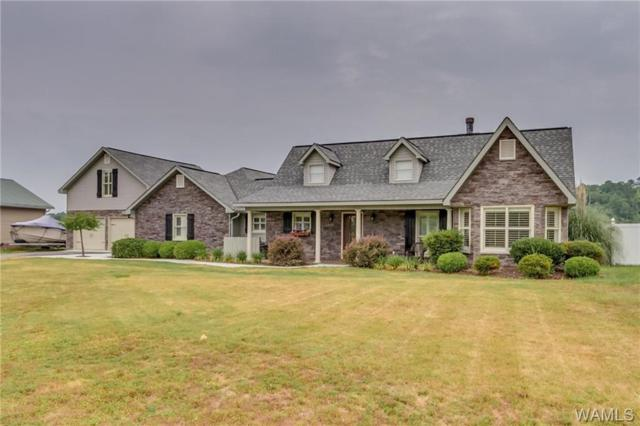 17076 Searcy Road, NORTHPORT, AL 35475 (MLS #133487) :: The Alice Maxwell Team
