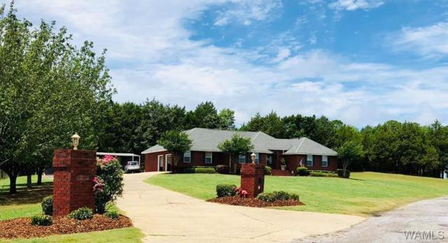 5204 Powe Road, DEMOPOLIS, AL 36732 (MLS #133555) :: The Gray Group at Keller Williams Realty Tuscaloosa