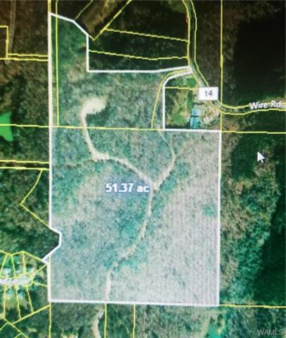 000 Wire Road, COTTONDALE, AL 35453 (MLS #133677) :: The Alice Maxwell Team