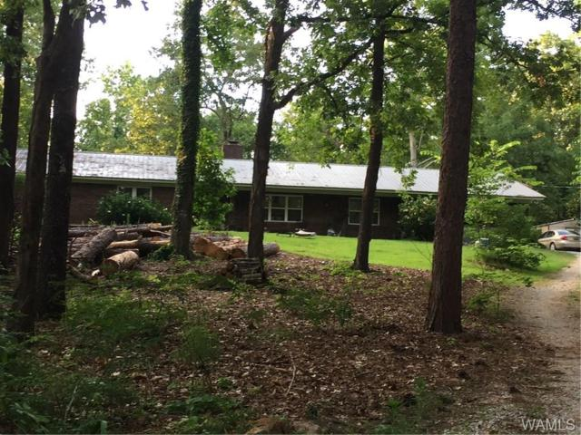 11702 Rufus King Drive, COTTONDALE, AL 35453 (MLS #133697) :: Hamner Real Estate