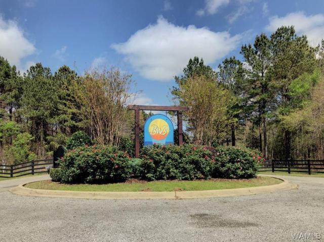 54 Black Warrior Bay, AKRON, AL 35441 (MLS #133751) :: The Gray Group at Keller Williams Realty Tuscaloosa