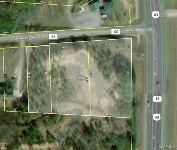 0 Highway 43 N, NORTHPORT, AL 35473 (MLS #133775) :: The Alice Maxwell Team