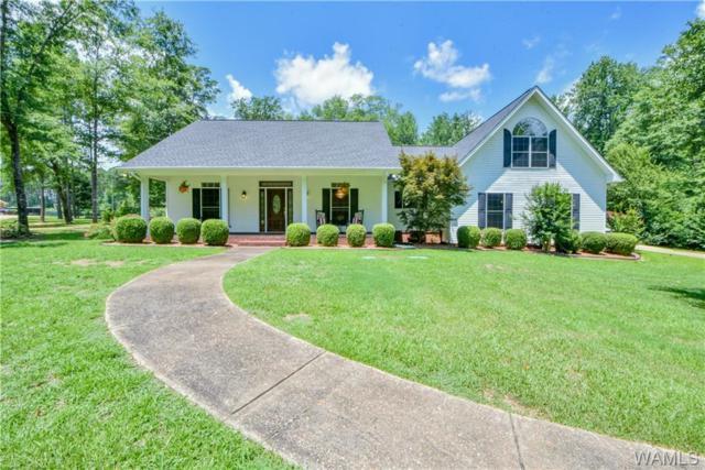 12215 Cherokee Drive, NORTHPORT, AL 35475 (MLS #133812) :: Hamner Real Estate