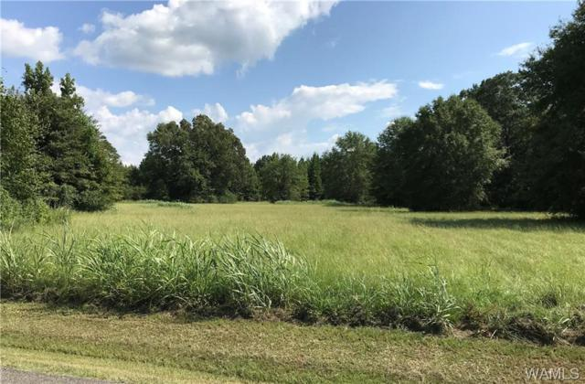 13820 Riverbend Road, MOUNDVILLE, AL 35474 (MLS #133933) :: The Advantage Realty Group