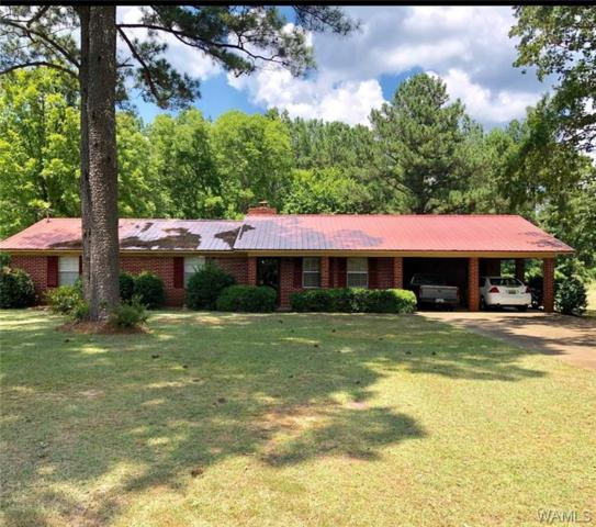216 Crescent Road, ALICEVILLE, AL 35442 (MLS #133988) :: The Gray Group at Keller Williams Realty Tuscaloosa