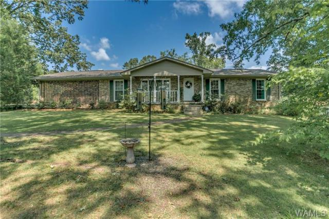 13076 Highway 11 South, FOSTERS, AL 35463 (MLS #134013) :: The Alice Maxwell Team