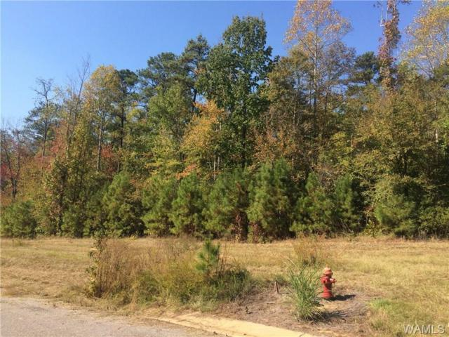 0000 Hidden Woods Lane, TUSCALOOSA, AL 35405 (MLS #134070) :: Caitlin Tubbs with Hamner Real Estate